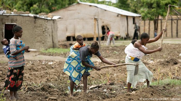 """""""41% da população angolana é pobre"""", diz relatório do IDREA"""